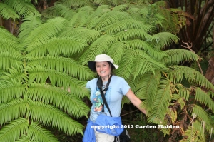 TheGardenMaiden_copyright2012_Hawaii_RStafne