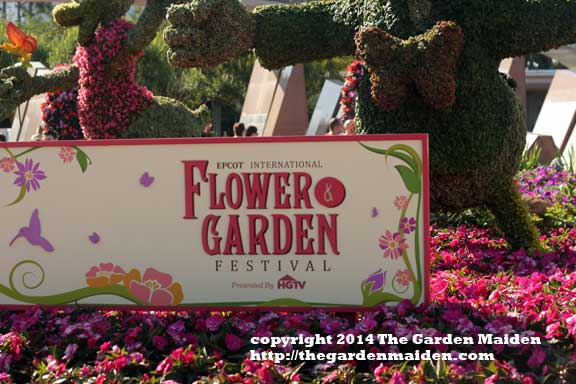 Epcot's International Flower and Garden Festival, 2014. May.  Image by The Garden Maiden, copyright 2014.