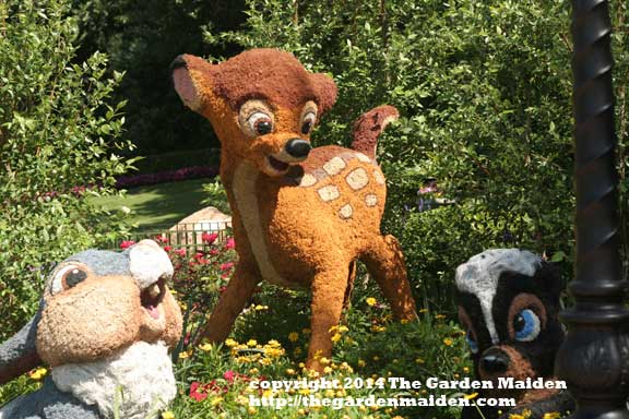 Bambi topiary. Epcot's International Flower and Garden Festival, 2014. May.  Image by The Garden Maiden, copyright 2014.