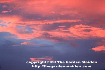 Sunset.  TheGardenMaiden_copyright2014